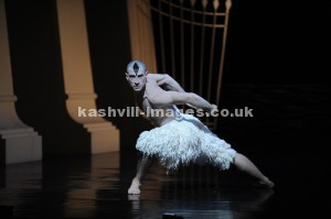 Jonathan Ollivier as The Swan